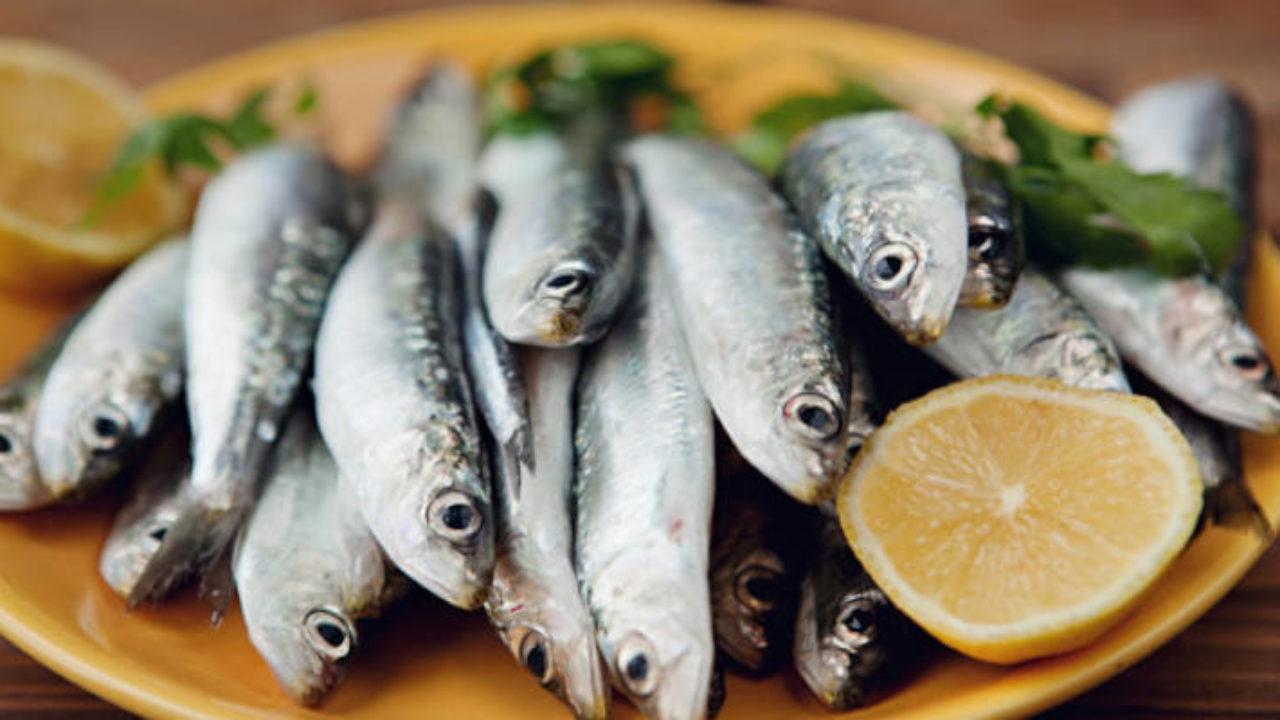 sardinha na pressão